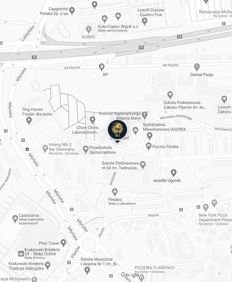 Mapa z lokalizacj膮 biura na ul. M艂y艅skiej Bocznej 11 Nauki jazdy Orze艂 Krak贸w