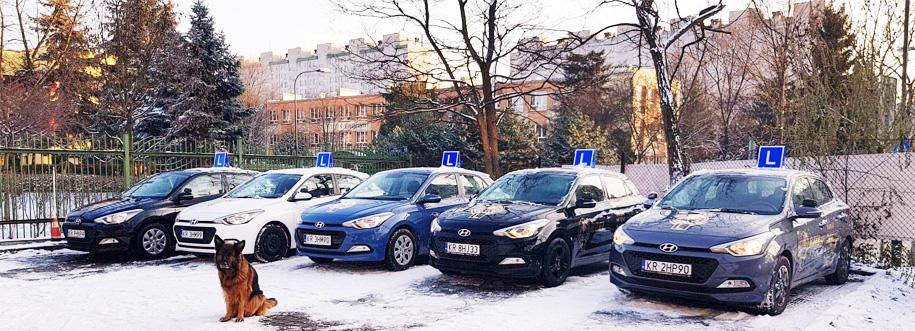 Flota pojazdów nauki jazdy Orzeł Kraków
